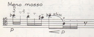 Homma 1993 4